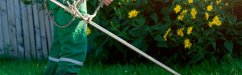 mantenimiento-de-áreas-verdes-y-jardines